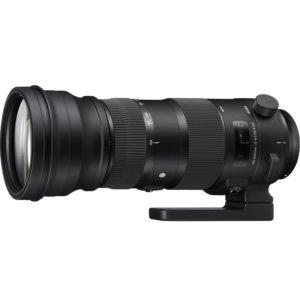 Sigma-150-600mm-f5-6.3-DG-OS-C-Nikon-huren